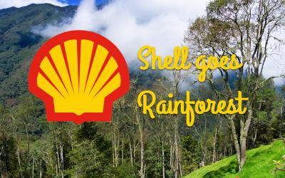 Shell volgt het goede voorbeeld van Beautiful Cups