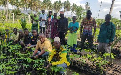 Het herstellen van Tanzania's regenwoud